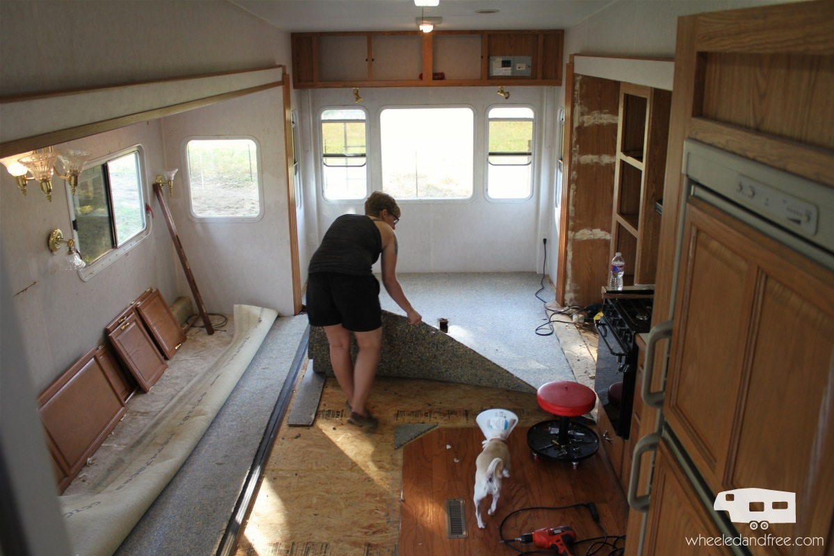 rv-carpet-removal
