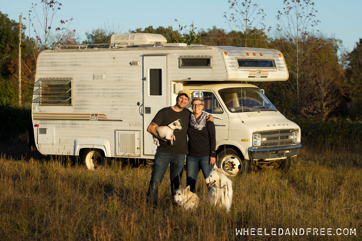 Wheeled and Free | The story of a young couple and their three dogs